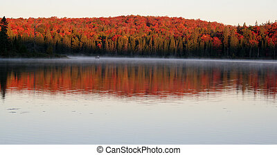 amanecer, otoño