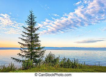 amanhecer, ligado, lago baikal