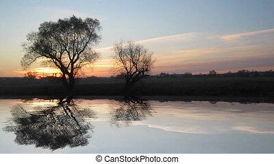 amanhecer, paisagem, com, árvore, e, lago