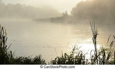 amanhecer, rio, água, nevoeiro