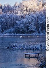 amanhecer, sobre, a, lago, em, inverno