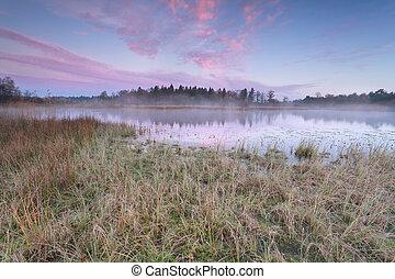 amanhecer, sobre, lago, em, gelado, outono, manhã