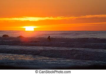 amanhecer, surfar, sessão