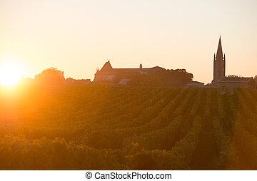 amanhecer, vinhedo, são, emilion, vinho bordéus