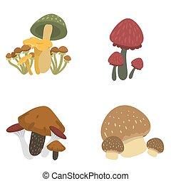 Amanita fly agaric toadstool mushrooms fungus different art ...