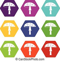 Amanita icon set color hexahedron