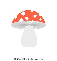 Amanita isolated. Poisonous Mushroom on white background.
