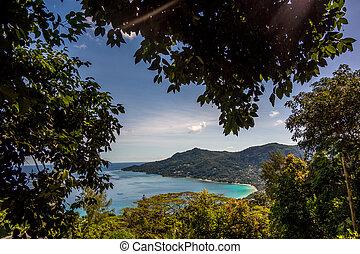 amant, vallon, seychelles, -, mahe