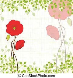 amapola, primavera, rojo
