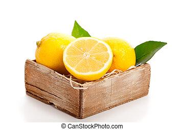 amarela, limão, com, verde sai, branco, experiência.