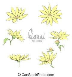 amarelo floresce