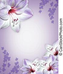 Amarillas purple - Image and illustration composition of...