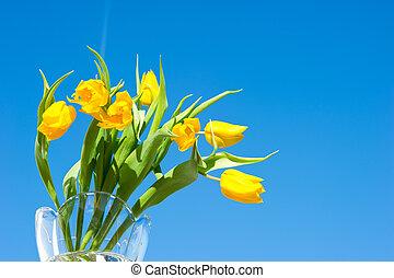 amarillo, primavera, tulipanes, encima, cielo azul