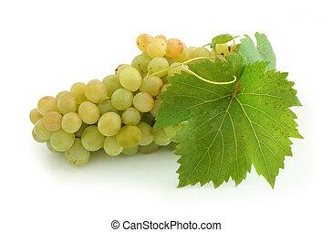 amarillo, uva, grupo