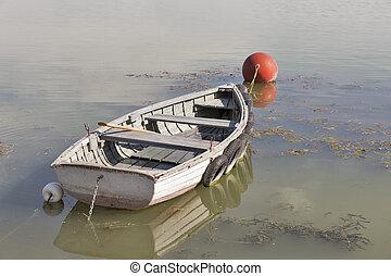 amarré, aviron, lac, balaton, hungary., bateau