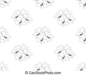 Amaryllis Seamless on White Background. Christmas Day....