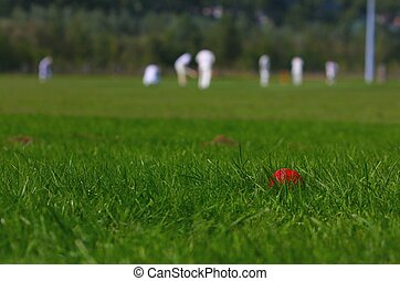 Amateur Cricket Game, Played in Walferdange (Luxembourg) on...