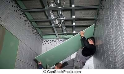 Amateur workers install gypsum drywall board on ceiling....