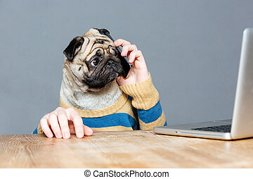 Amazed man with pug dog head talking on mobile phone