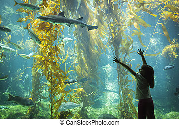 Amazed Young Girl Standing Up Against Large Aquarium Observation Glass Reaching for Leopard Shark.