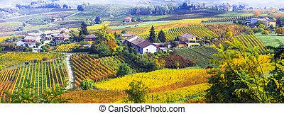 Amazing autumn scenery of Piedmont region.Italy.