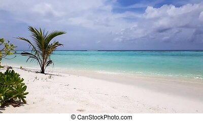 Amazing beauty white sand beach of Maldive Island. Turquoise...