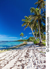 Amazing deserted tropical beach on south side of Samoa Island with palm trees