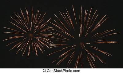 amazing fireworks 3 - three double bouquets of wonderful...