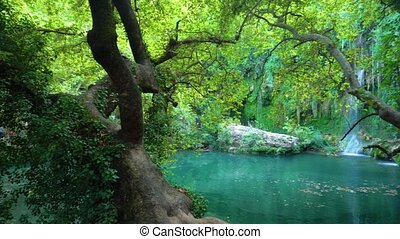 Amazing green calm pond and waterfall - Breathtaking view of...