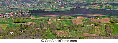 Amazing green scenery in Prigorje, Croatia - Vineyaeds and...