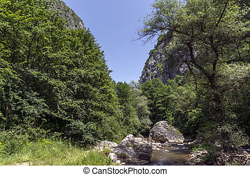 Amazing landscape of Erma River in sunny summer day