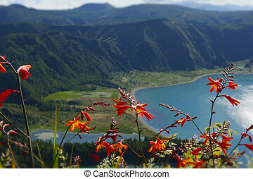 amazing landscape view of crater volcano lake in Sao Miguel island Azores Portugal with flowers