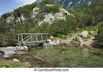 Amazing Landscape with Wooden bridge over mountain river, Pirin Mountain