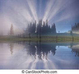 Amazing misty sunrise over the forest lake. Ukraine. Carpathian