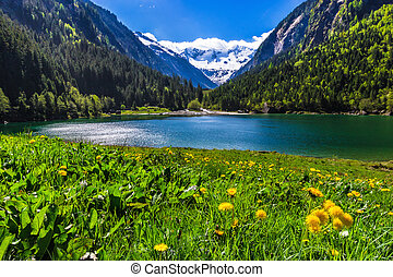 Amazing mountain landscape with lake and meadow flowers in...