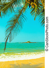 Amazing sandy beach with coconut palm against azure water ...