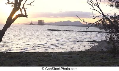 Amazing sea view with trees silhouette making frame border. Seashore with mountain and oil derrick. Sunset video.
