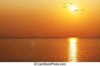 Amazing summer red dawn