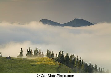 Amazing sunrise in the mountains with fog and sun. Carpathian Mo