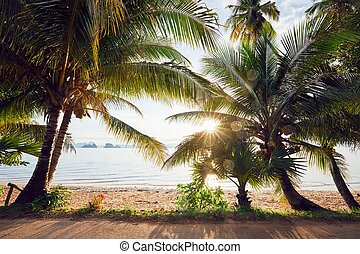 Amazing sunrise on the beach