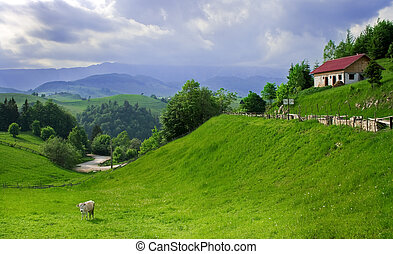 Amazing view in a romanian village - Amazing and peaceful...