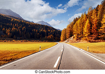 Amazing view of alpine road, orange larch forest and high mountains
