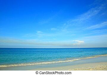 Amazing view on Eagle Beach of Aruba Island. Caribbean.