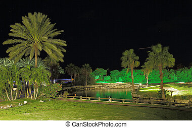 Amazing view on night park with green trees and lake. Aruba island