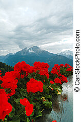 Amazing view on Watzmann with red flowers. Mountain in the...