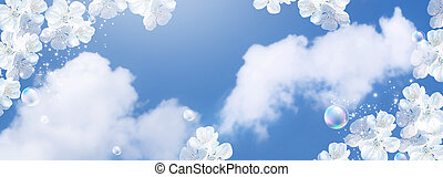 Amazing white cherry flowers and bubbles against the clouds ...