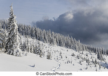 Amazing winter backcountry landscape high in the mountains.