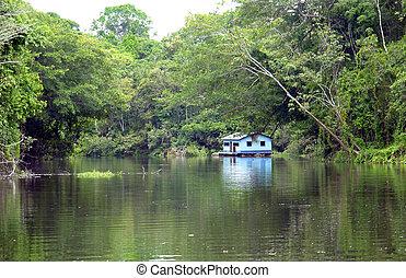 Amazon margin riverbank landscape and hut reflex...