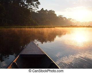 amazon rainforest, wschód słońca, przez, łódka
