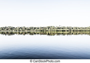 Amazon river in morning
